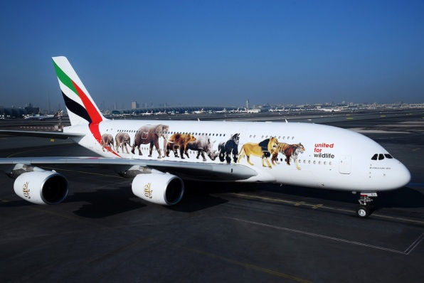 United for wildlife Jumbo jet